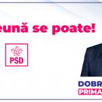 banner presaă